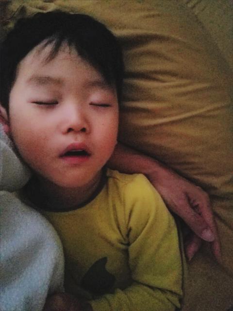 lucabear.sleeping.PNG